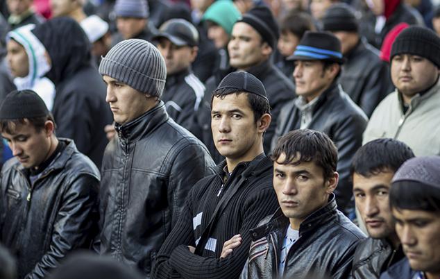 Оформление трудовых мигрантов